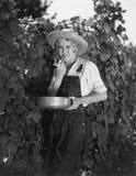 Jonge vrouw het plukken bonen (Alle afgeschilderde personen leven niet langer en geen landgoed bestaat Leveranciersgaranties die  Royalty-vrije Stock Foto