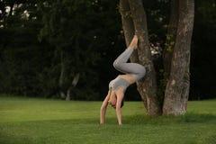 Jonge vrouw het praktizeren yoga in park Stock Foto