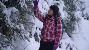 Jonge vrouw in het sneeuwhout Jonge mooie toeristentribunes alleen in het bos en de blikken rond Zij bekijkt sneeuw en stock footage