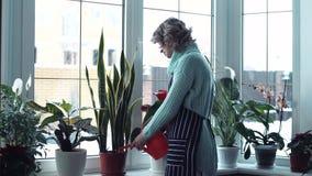 Jonge vrouw het water geven bloemen binnen huis stock videobeelden