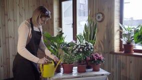 Jonge vrouw het water geven bloemen binnen huis stock video