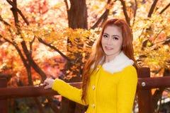Jonge vrouw met de herfstbladeren royalty-vrije stock foto's