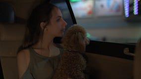 Jonge vrouw met haar hond die in een taxi reizen stock videobeelden