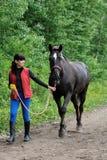 Jonge vrouw met Trakehner-paard Royalty-vrije Stock Foto