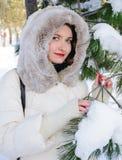 Jonge vrouw naast pijnboomboom met ingesneeuwde takken Stock Afbeeldingen