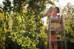 Jonge vrouw omhoog op een ladder stock foto