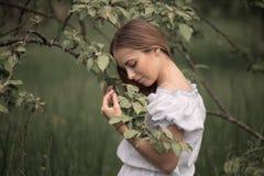 Jonge vrouw omhoog op ladder het plukken appelen van een appelboom  royalty-vrije stock foto's