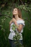 Jonge vrouw omhoog op ladder het plukken appelen van een appelboom  royalty-vrije stock afbeelding