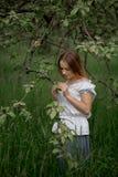 Jonge vrouw omhoog op ladder het plukken appelen van een appelboom  royalty-vrije stock foto