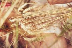 Jonge vrouw op gebied met tarwe Stock Foto