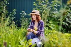 Jonge vrouw in strohoed tijdens oogsttijd stock foto
