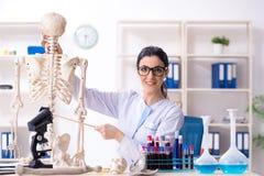 Jonge vrouwelijke archeoloog die in het laboratorium werken royalty-vrije stock afbeeldingen