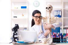 Jonge vrouwelijke archeoloog die in het laboratorium werken royalty-vrije stock afbeelding