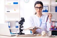 Jonge vrouwelijke archeoloog die in het laboratorium werken stock afbeelding