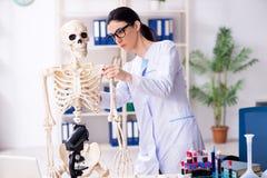 Jonge vrouwelijke archeoloog die in het laboratorium werken stock fotografie