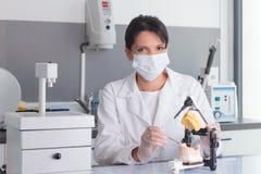Jonge vrouwelijke arts die aan tandprotheselaboratorium werken Royalty-vrije Stock Afbeeldingen
