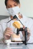 Jonge vrouwelijke arts die aan tandprotheselaboratorium werken Stock Foto's