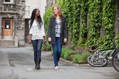 Jonge vrouwelijke vrienden die een praatje hebben terwijl het lopen stock afbeeldingen