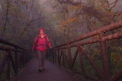 Jonge vrouwelijke wandelaar die brug in nevelig bos kruisen royalty-vrije stock foto
