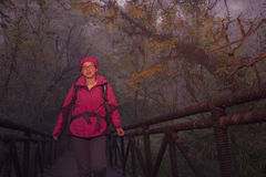 Jonge vrouwelijke wandelaar die brug in nevelig bos kruisen Royalty-vrije Stock Fotografie