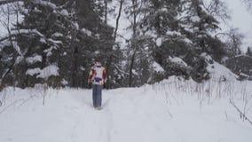 Jonge vrouwelijke wandeling met een rugzak in mooi de winterbos, die op een weg vanaf de camera, lichte sneeuwval lopen stock video