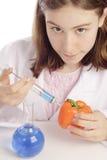 Jonge vrouwelijke wetenschapper die een oranje peper inspuit Royalty-vrije Stock Foto's