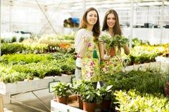 Jonge vrouwen in de tuin Stock Afbeelding