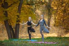 Jonge vrouwen die de oefening van de Yogaactie gezond in het park doen royalty-vrije stock afbeelding
