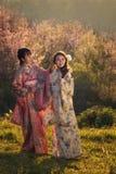 Jonge vrouwen die een kimono dragen royalty-vrije stock afbeeldingen