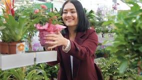 Jonge vrouwen en het winkelen bloemen die in langzame motie kiezen Vrouw in een Supermarkt Het meisje in de winkel koper kies stock video