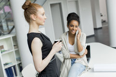 Jonge vrouwen in het bureau Stock Fotografie