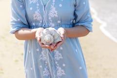 Jonge vrouwenhand die een zeeschelp houden Royalty-vrije Stock Afbeeldingen