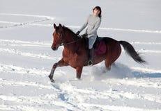 Jonge vrouwenhorseback die op een sneeuwopen plek berijden Stock Foto's