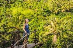 Jonge vrouwenreiziger op meningspunt op de achtergrond van een wildernis, Bali, Indonesië stock foto's