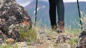 Jonge vrouwenwandelaar die met blauwe bagpack in mooie bergen met groen gras wandelen stock footage