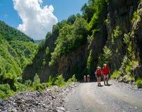 Jonge wandelaarstrekking in Svaneti, Stock Afbeelding
