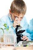 Jonge wetenschapper stock afbeeldingen
