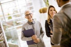 Jonge zakenlieden met hogere en jonge onderneemsters in bureau stock foto
