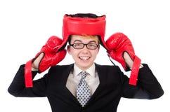 Jonge zakenmanbokser Royalty-vrije Stock Foto