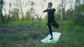 Jonge zwangere vrouw die yoga buiten doen stock footage
