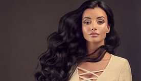 Jonge zwarte haired vrouw met omvangrijk, glanzend en golvend haar royalty-vrije stock foto
