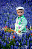 Jongen in Bluebonnets Stock Foto's