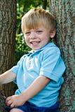 Jongen in boom Stock Afbeeldingen