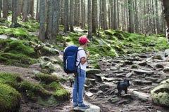Jongen in bos Stock Afbeelding