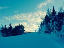 Jongen bovenop skihelling stock afbeeldingen