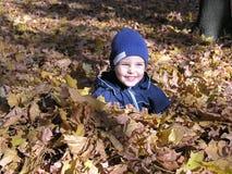 Jongen in de bladeren van de esdoornherfst Royalty-vrije Stock Foto