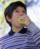 Jongen in de gestreepte purpere beet van de wolsweater met honger een appel royalty-vrije stock fotografie