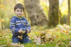 Jongen in de herfstbos Stock Afbeeldingen