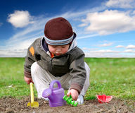 jongen in de tuin Stock Afbeelding