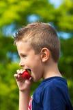 Jongen die aardbei eet Stock Afbeelding